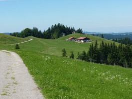 Bergsommer ist Genußzeit - Oberstaufen