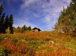 Herbstzeit ist Wanderurlaub - Oberstaufen