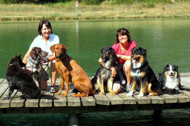 Hundewandertouren Kleinwalsertal