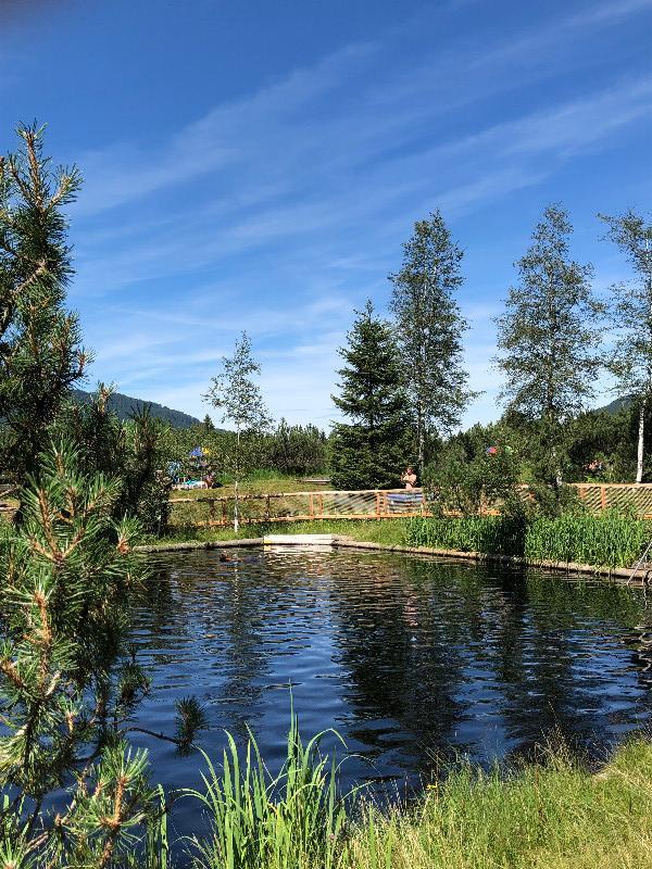 Natur - Hochmoorbad Hindelang