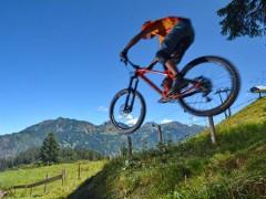 Webcam Bike Park im Allgäu