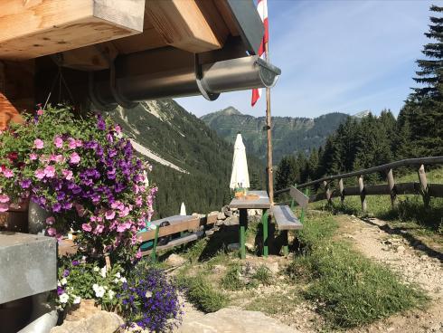 Fluchtalpe auf dem Weg zur Fiedererpasshütte